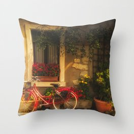 Red Bicycle in front of a Window with flowers Throw Pillow