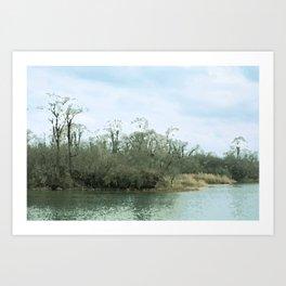 Lake Scene Art Print