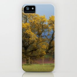Sunlight before the Storm iPhone Case