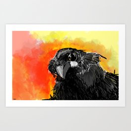 Curious Crow Art Print