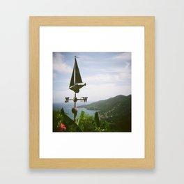 Wind Vane on Holga Framed Art Print