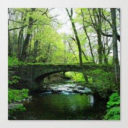 Forest Bridge Canvas Print