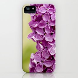 Beautiful Lilac iPhone Case