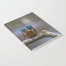 Kingfisher in the rain Notebook