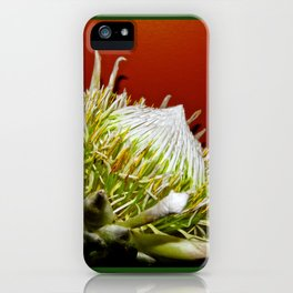 """King Protea"" by ICA PAVON iPhone Case"