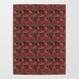 lions mouths floral pattern Poster
