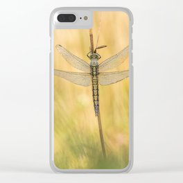 Black-tailed skimmer (Orthetrum cancellatum) Clear iPhone Case