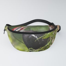 Pileated Woodpecker 6340 Fanny Pack