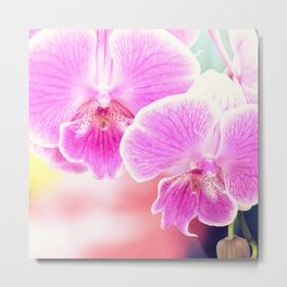 Close up Orchid #11 Metal Print