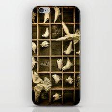 Pigeon Holed iPhone & iPod Skin