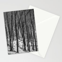 Through the Snowy Beech Wood Stationery Cards