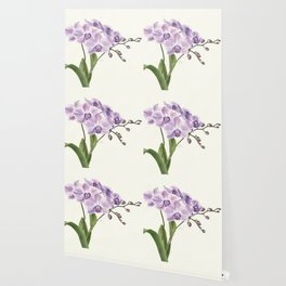 Purple phalaenopsis artwork Wallpaper