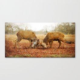 Rivalry Canvas Print