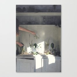 The Greenhouse Laboratory Project Canvas Print