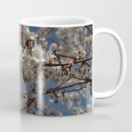 Yoshino Cherry - Prunus yedoensis Coffee Mug
