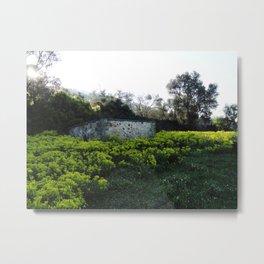 In Dreams Metal Print