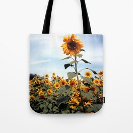 Sunflower Photograph Tote Bag