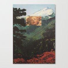 54. Canvas Print