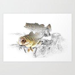 Largemouth Black Bass Fishing Art Art Print