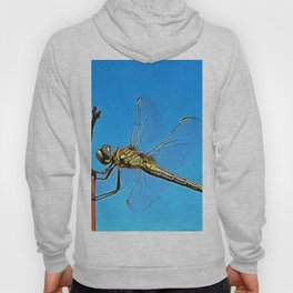 Hang On In There Artistic Dragonfly Hoody