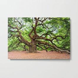 Huge Oak Tree Metal Print