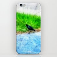 crow iPhone & iPod Skins featuring Crow by Geni