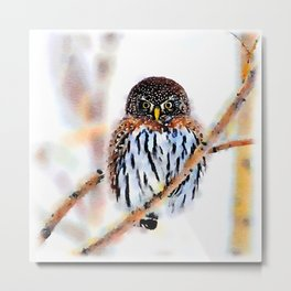 Winter Owl Watercolor Metal Print