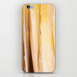 Indian Summer 3 iPhone Skin
