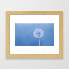 Tranquil Dandelion Framed Art Print