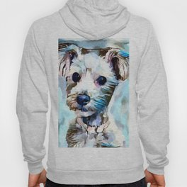 Schnoodle 3 Hoody