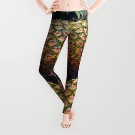 Pineapples Leggings