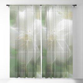 White Shiny Jasmine Sheer Curtain