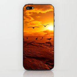 The Pilgrimage iPhone Skin