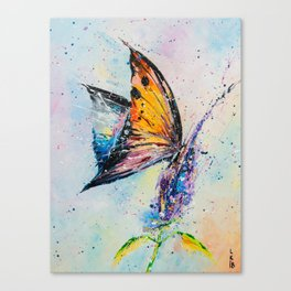 Butterfly on fiower Canvas Print