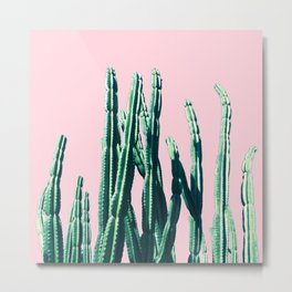 Green Cactus 14 Metal Print