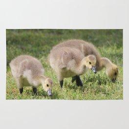 Three Goslings Rug