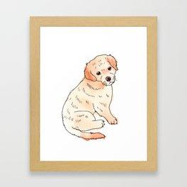 Copper Puppy Framed Art Print