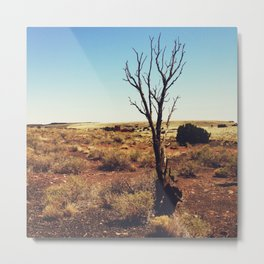 Arizona Desert Landscape Photograph - Wupatki National Monument Metal Print