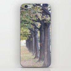 l'allée royale iPhone & iPod Skin