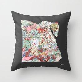 Egypt map #2 Throw Pillow