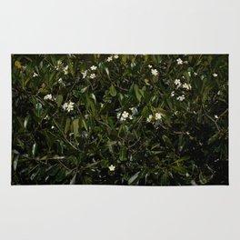 Bonitu i Flores Plumeria Rug