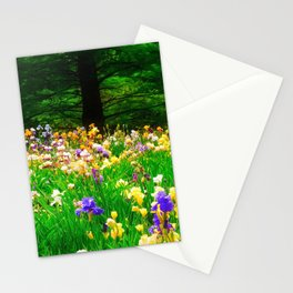Field Of Iris Stationery Cards