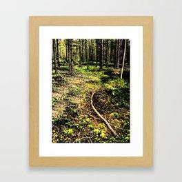Season casualty Framed Art Print