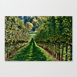 The Vineyard Canvas Print