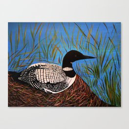 Loon on the Nest  Canvas Print