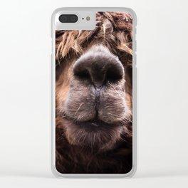 Curious Llama Clear iPhone Case