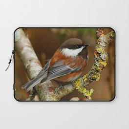 Chestnut-Backed Chickadee in the Cherry Tree Laptop Sleeve