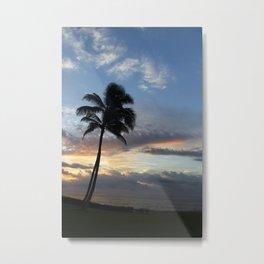 In the Palm of Hawaii Metal Print
