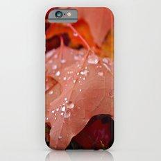 Autumn dew iPhone 6s Slim Case