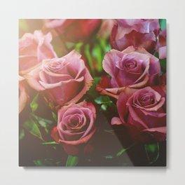 Light Maroon Roses Metal Print